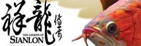 北京龙鱼|北京水族馆|北京水族批发市场