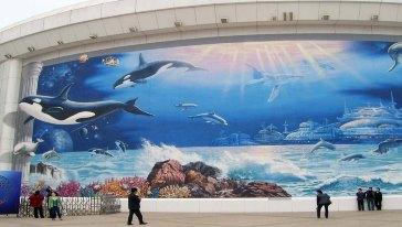 北京观赏鱼批发市场北京海洋馆哪个最好玩?