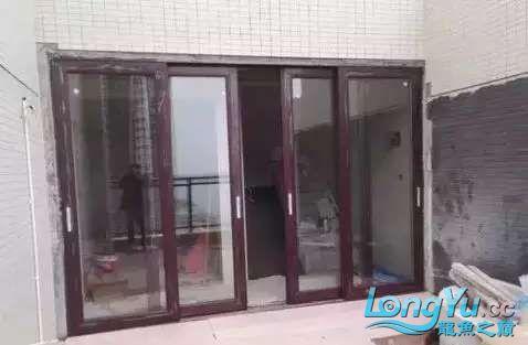 造鱼池再也不需要半亩地和后花园了 北京观赏鱼 北京龙鱼第8张
