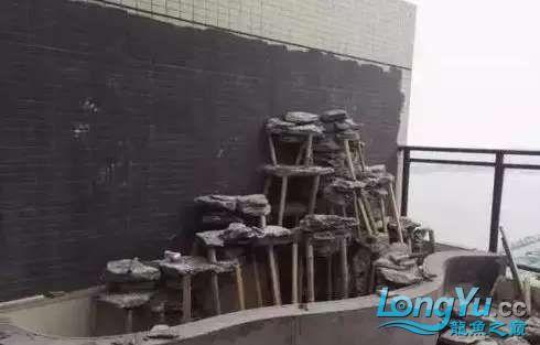 造鱼池再也不需要半亩地和后花园了 北京观赏鱼 北京龙鱼第16张
