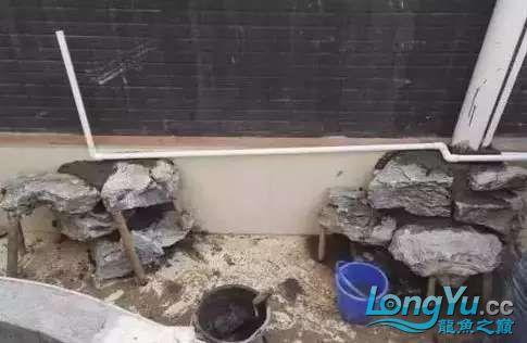 造鱼池再也不需要半亩地和后花园了 北京观赏鱼 北京龙鱼第15张