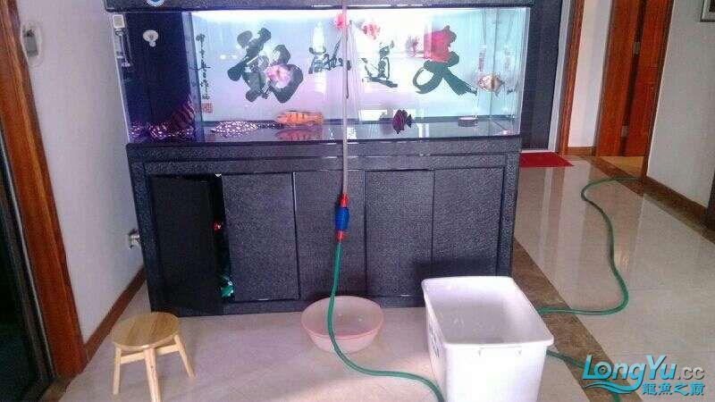 [鱼趣养水机养水说一说]己经2年多的换水方式 北京观赏鱼 北京龙鱼第4张