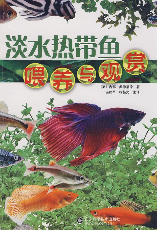 三湖慈鲷蝴蝶随拍 北京观赏鱼 北京龙鱼第6张