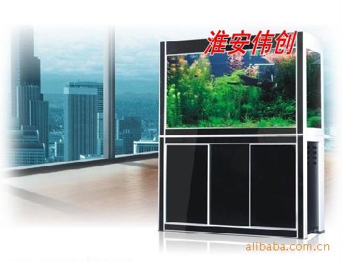 折腾呀鱼种混养 北京龙鱼论坛 北京龙鱼第5张