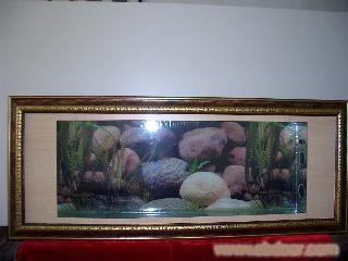 请求前辈帮我看看这是什么龙鱼? 北京龙鱼论坛 北京龙鱼第3张