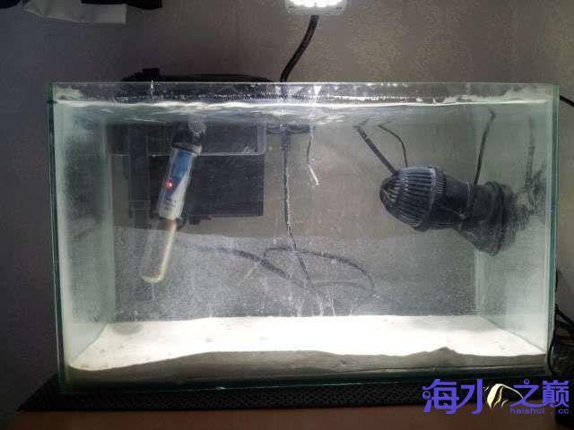 铺上底砂后水好浑啊 北京龙鱼论坛 北京龙鱼第1张