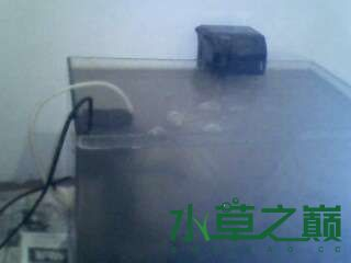 屌丝开缸穷啊什么都是拣来的 北京龙鱼论坛 北京龙鱼第1张