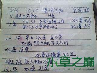 屌丝开缸穷啊什么都是拣来的 北京龙鱼论坛 北京龙鱼第15张