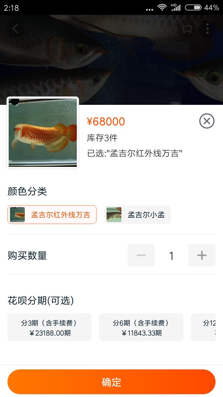 这是有多贵龙鱼 北京观赏鱼 北京龙鱼第1张
