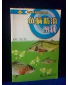 霸气的巴西黑牙 北京观赏鱼 北京龙鱼第7张