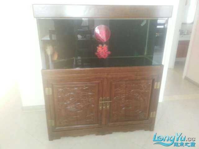 河北承德 帮朋友做的鱼缸 1206070 北京龙鱼论坛 北京龙鱼第1张