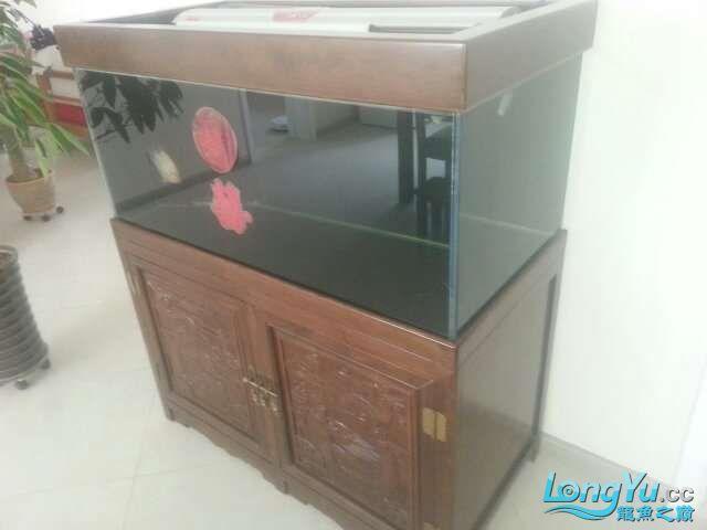 河北承德 帮朋友做的鱼缸 1206070 北京龙鱼论坛 北京龙鱼第4张