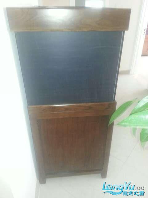 河北承德 帮朋友做的鱼缸 1206070 北京龙鱼论坛 北京龙鱼第6张