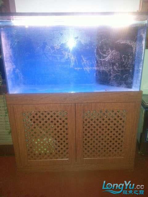 河北承德 帮朋友做的鱼缸 1206070 北京龙鱼论坛 北京龙鱼第8张