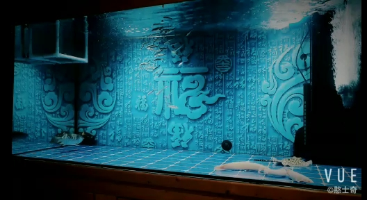 换缸+跳缸两个月了 北京观赏鱼 北京龙鱼第1张