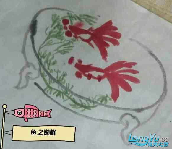 【鱼之巅峰】【艺】2条大眼鱼 北京龙鱼论坛 北京龙鱼第1张