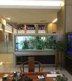 鱼旺居水族馆(滨河南路店) 北京龙鱼论坛