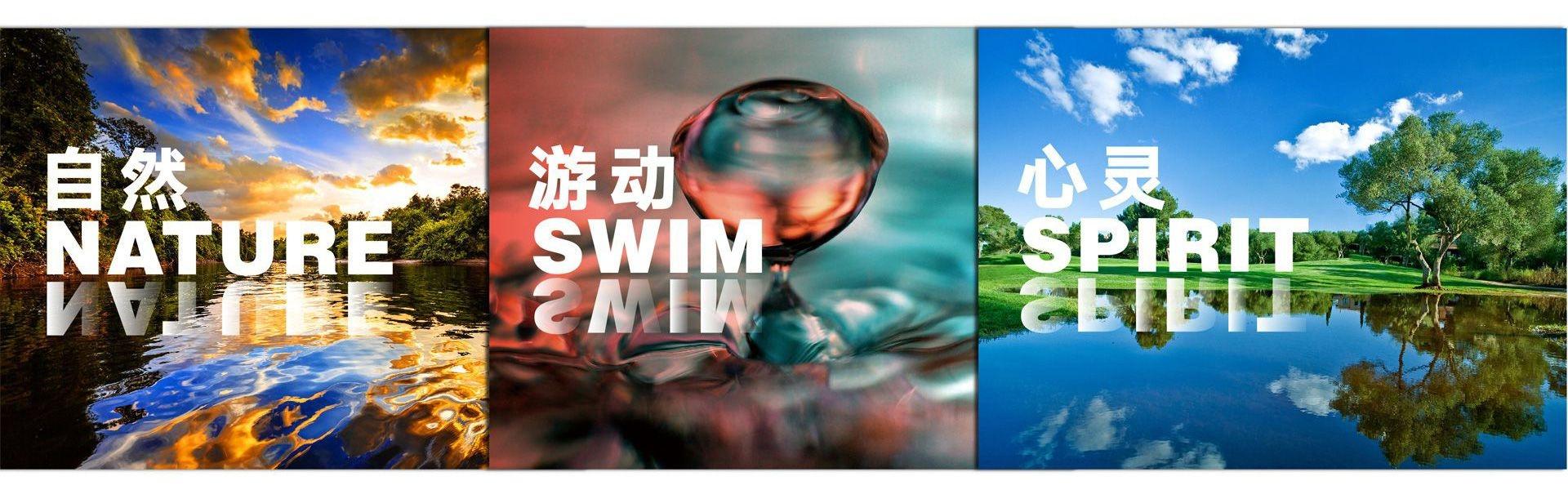 北京大白鲨苗自然游动于心龙年