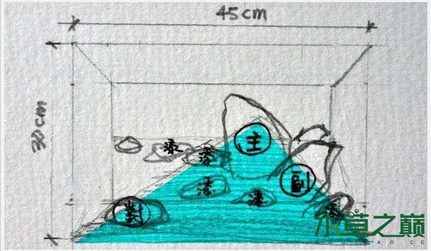 经典造景的分析图 北京观赏鱼 北京龙鱼第1张