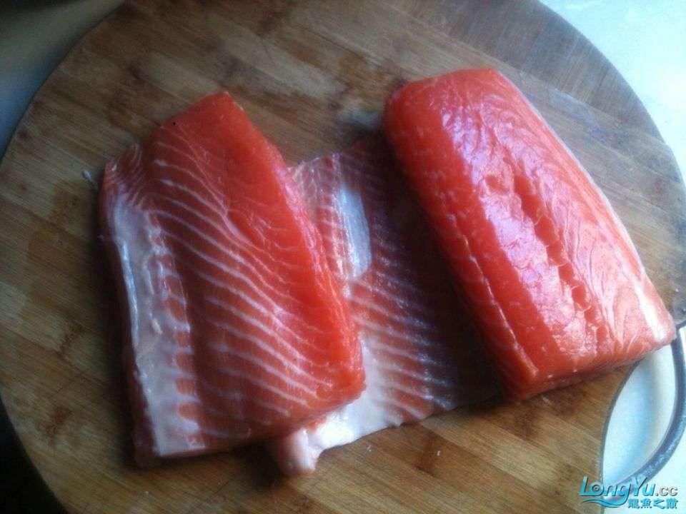 继上次发帖很多鱼友问我的龙鱼怎么胖吃什么的?来看看吧 北京观赏鱼 北京龙鱼第3张
