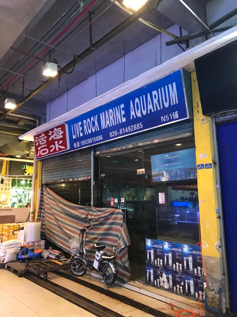 今天回花地湾了 北京龙鱼论坛 北京龙鱼第1张