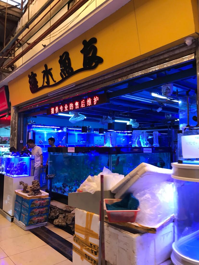 今天回花地湾了 北京龙鱼论坛 北京龙鱼第3张