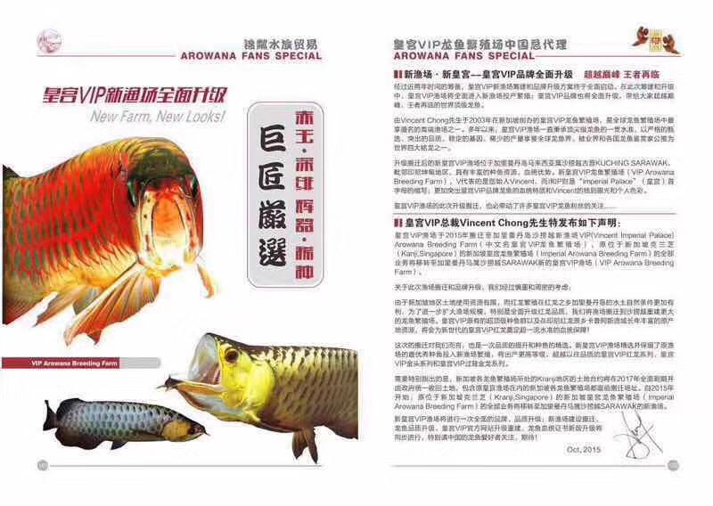 皇宫VIP龙鱼繁殖场 北京观赏鱼 北京龙鱼第4张