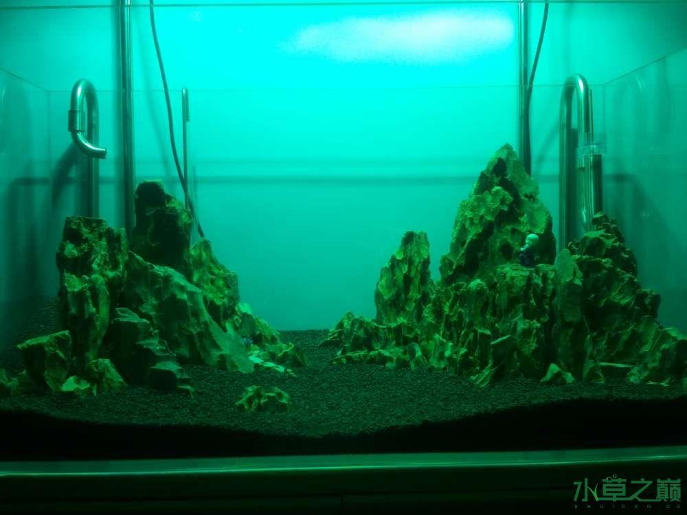 千寻杯造景比赛+中缸组:我的草缸 北京观赏鱼 北京龙鱼第7张