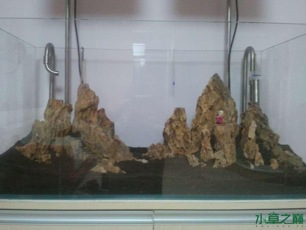 千寻杯造景比赛+中缸组:我的草缸 北京观赏鱼 北京龙鱼第8张