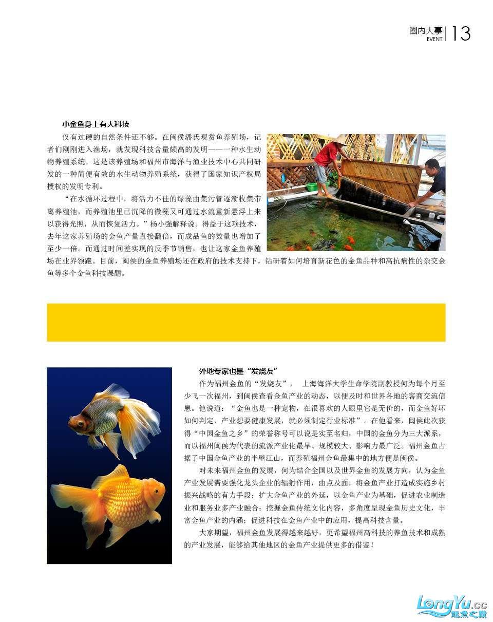 35家媒体记者探访闽侯金鱼大产业 北京龙鱼论坛 北京龙鱼第3张