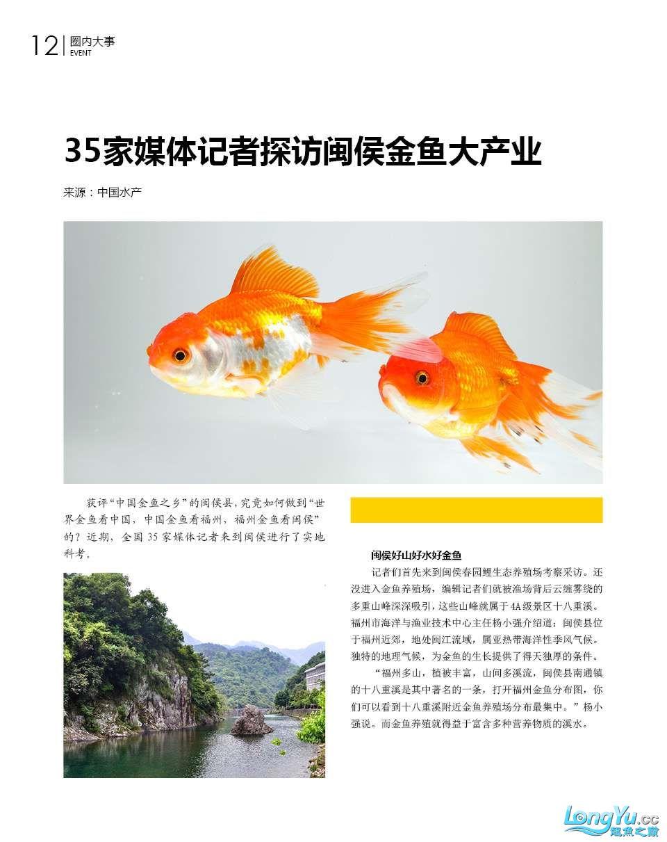 35家媒体记者探访闽侯金鱼大产业 北京龙鱼论坛 北京龙鱼第2张