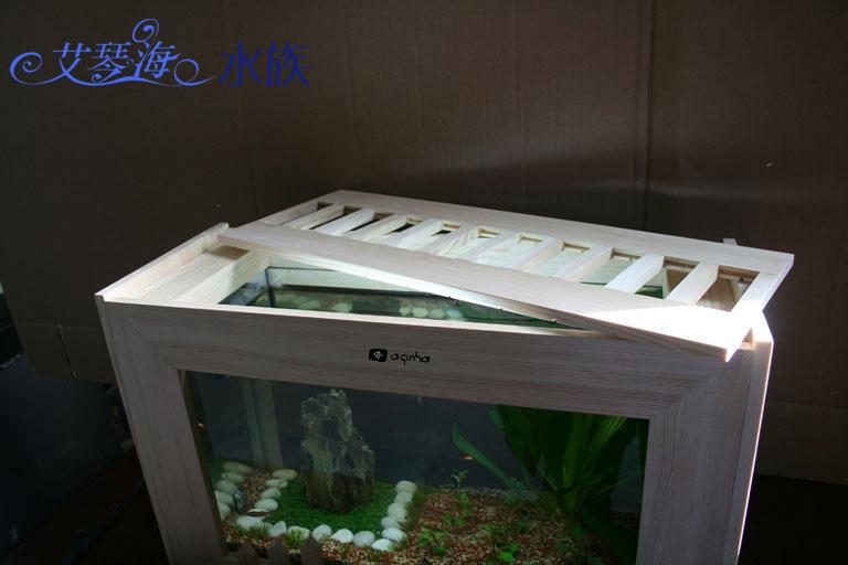 粗线白纹小黑帝的挑选添加成鱼对比图 北京龙鱼论坛 北京龙鱼第13张