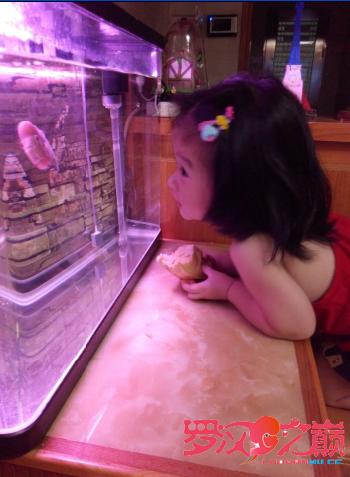 养鱼的女人不是传说 北京龙鱼论坛 北京龙鱼第6张