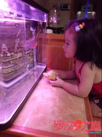 养鱼的女人不是传说 北京龙鱼论坛 北京龙鱼第4张