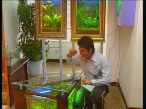 这是什么虾一张流 北京龙鱼论坛 北京龙鱼第2张