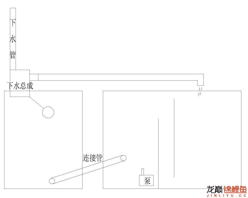 虹吸底滤问题,有图求解答 北京观赏鱼 北京龙鱼第2张