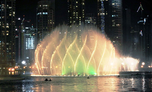 北京红眼白子关刀鱼图片虎鱼的背景 北京龙鱼论坛 北京龙鱼第2张