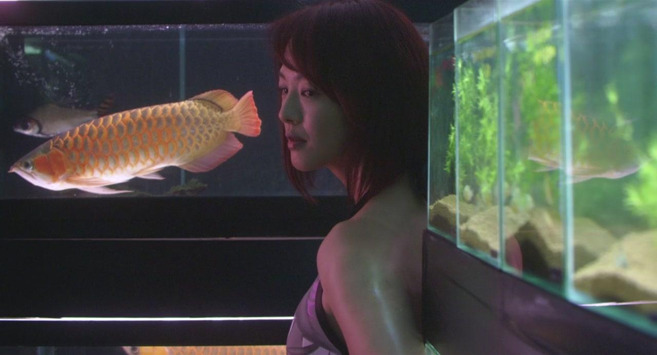 这啥呀 感觉蛮好看的 爆藻中 北京龙鱼论坛