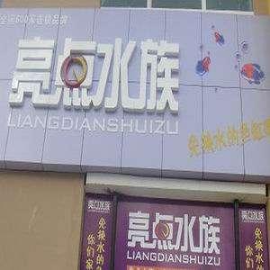 一群松石条纹清晰状态非凡 北京龙鱼论坛