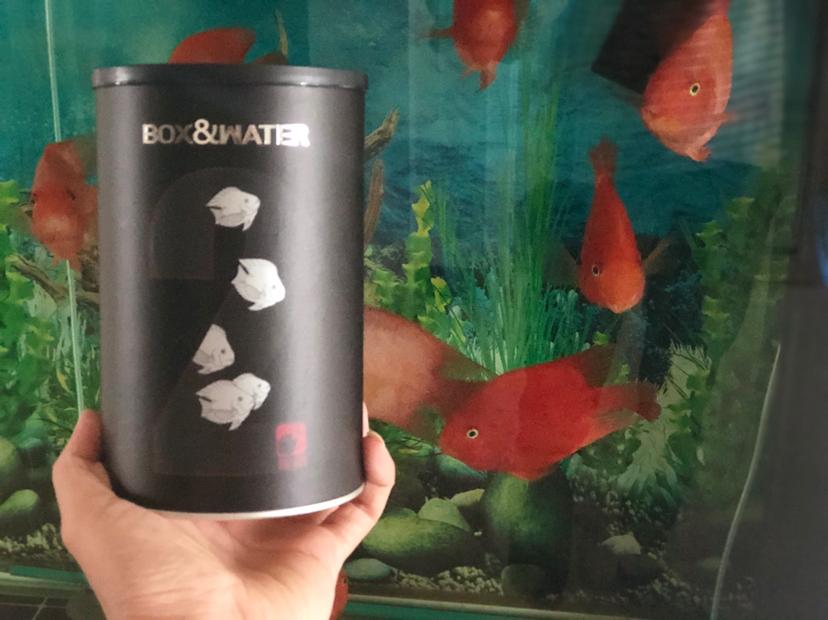七夕获奖礼物已收到感谢大家支持 北京观赏鱼 北京龙鱼第4张