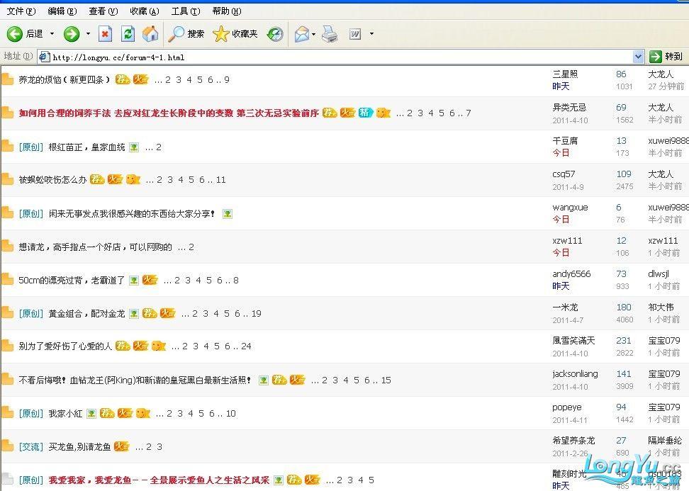 求救 我访问龙颠网站怎么会变这样了 北京龙鱼论坛 北京龙鱼第2张