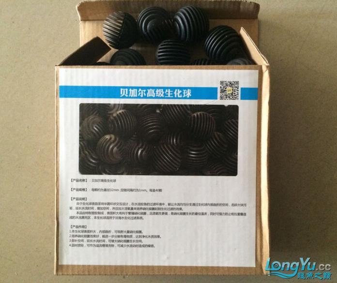 龙北京水族论坛打不开巅积分换的生化球收到了 北京观赏鱼 北京龙鱼第3张