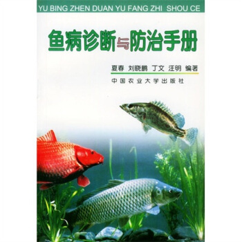 北京淡水观赏鱼批发深夜打卡虎鱼 北京观赏鱼 北京龙鱼第2张