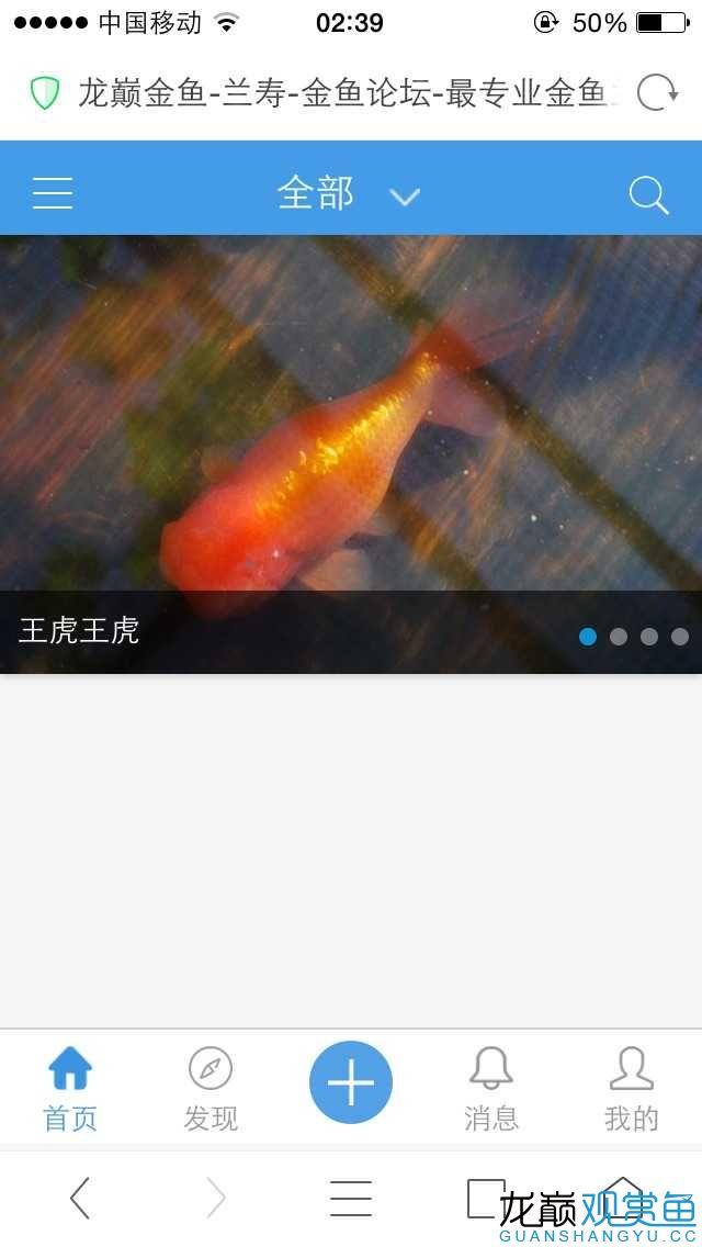 恼火北京白化鸭嘴鱼哪个店的最好的APP版龙巅! 北京观赏鱼 北京龙鱼第1张