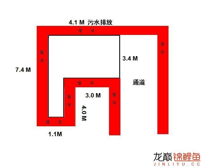 求助 室外想建个鱼池求大神帮看看 北京观赏鱼 北京龙鱼第1张