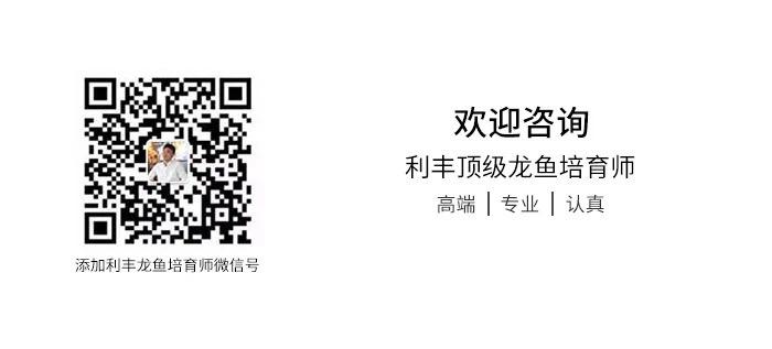 北京鱼缸定制时报利丰国际受邀参与2019年印尼泗 北京龙鱼论坛 北京龙鱼第14张