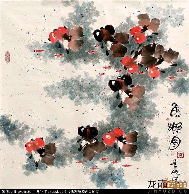 水墨金鱼更显风趣灵动 北京观赏鱼 北京龙鱼第2张
