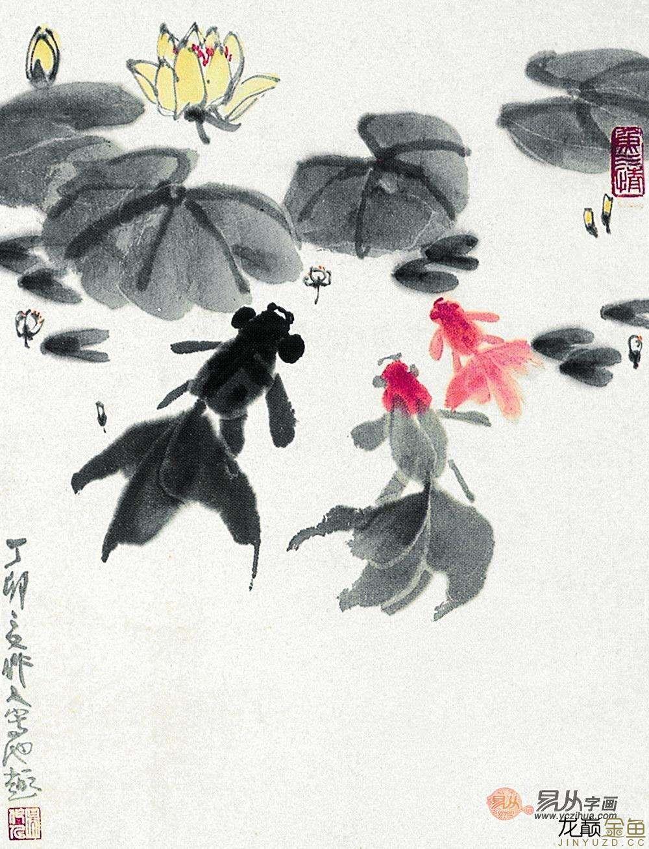 水墨金鱼更显风趣灵动 北京观赏鱼 北京龙鱼第15张