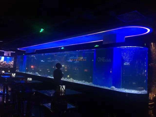 周末换水的最佳选择 北京龙鱼论坛 北京龙鱼第2张