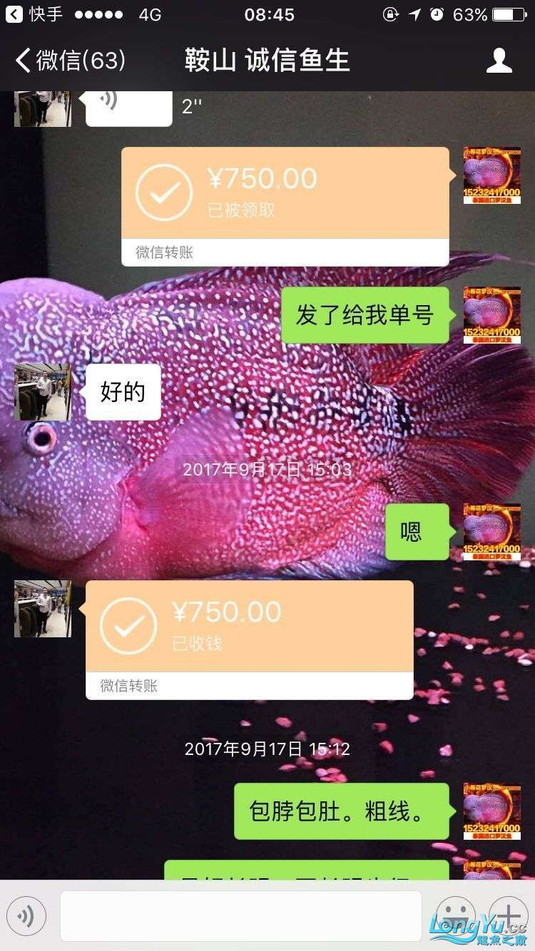 举报一个鞍山骗子 北京龙鱼论坛 北京龙鱼第5张